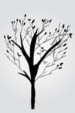 Vector sketchy of silhouette tree Royalty Free Stock Photos