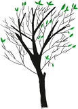 Vector sketchy of silhouette tree Royalty Free Stock Photo
