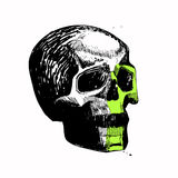 Vector skull, sketch, hand draw, pen, ink, relaxed, blots, black and green, suitable for prints on clothing, t-shirt, Build, bannn. Vector skull, sketch, hand Stock Image