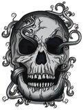 Vector Skull with Vines. Vector Skull with Evil Laugh with Vines going through royalty free illustration