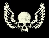 Vector. Skull and wings Royalty Free Stock Photos