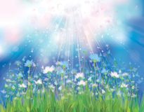 Vector sky background with blue flowers. Royalty Free Stock Photo