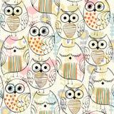 Vector Sleeping owl Royalty Free Stock Photo