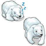 Vector sleeping white polar bear and growling bear Royalty Free Stock Images