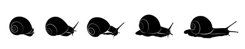 Vector snails. black and white silhouette royalty free illustration