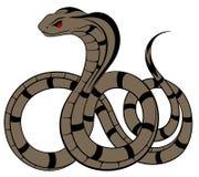 Vector Snake, Cobra Stock Photography