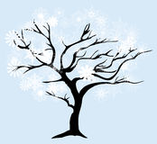 Vector Snow Tree. Vector illustration of a winter tree with snowflakes Christmas background Royalty Free Stock Photo