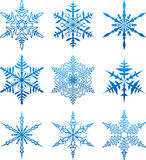 Vector snowflakes. Royalty Free Stock Photography