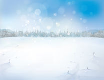 Vector snowy landscape with forest background. Stock Photos