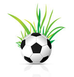 Vector soccer ball Royalty Free Stock Photo