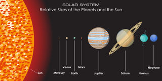 Vector solar system with planets. Solar System Relative Sizes of the Planets and the Sun Royalty Free Stock Images