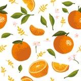 Vector Sommermuster mit Orangen, Blumen und Blättern Nahtloses Beschaffenheitsdesign stock abbildung