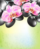Spa background with orchids Stock Photography