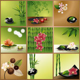 Vector Spa Collage. Website template for spa or beauty salon, eps10 Royalty Free Stock Photos