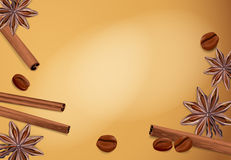 Vector spices: cinnamon, coffee bean, star anise Royalty Free Stock Photography