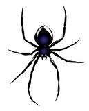Vector. Spider Royalty Free Stock Images