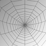 Vector spider web Royalty Free Stock Images