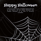 Vector spider web. Spider web. Black and white vector background for halloween Stock Images