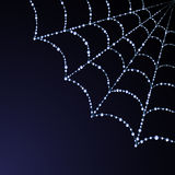 Vector spider web illustration Stock Photography