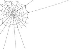 Vector Spider Web On White Stock Images
