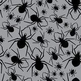 Vector spiders seamless pattern. Vector illustration. Stock Images
