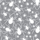 Vector spiders seamless pattern. Vector illustration. Royalty Free Stock Photography