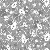 Vector spiders seamless pattern. Vector illustration. Stock Photography