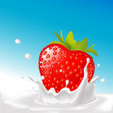 Vector splash of milk with big strawberry- illustration Royalty Free Stock Image