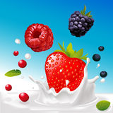 Vector splash of milk with forrest fruit mix - illustration Stock Image