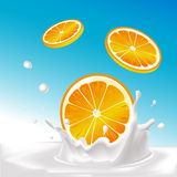 Vector splash of milk with orange fruit - illustration Royalty Free Stock Photos