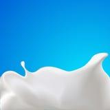 Vector splash of milk or yogurt - illustration Stock Photography