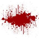 Vector splatter red color background.  illustration . Royalty Free Stock Image