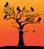 Vector Spooky Tree. Vector illustration of a spooky tree with crows Stock Photography