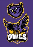 Sport mascot style of owl in set. Vector of sport mascot style of owl in set Stock Photo