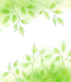 Vector spring backgrond with green foliage Royalty Free Stock Photo