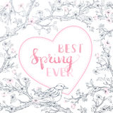 Vector spring background. Stock Image