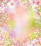 Vector spring background. royalty free illustration