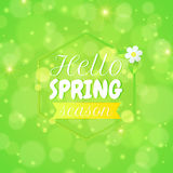 Vector spring background with text 'hello spring season'. Greeting card. Royalty Free Stock Photo