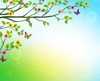Vector Spring  Background of Tree Branches with Growing Leaves. And Colorful Flowers in a Horizon for Springtime or Nature Related Designs. Vector Illustration Royalty Free Stock Photos