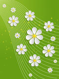 Vector spring background with volumetric flowers. Paper cut flowers on green background Royalty Free Stock Photography