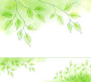 Vector spring banner with green foliage. Vector spring web banner with green leaves stock illustration