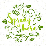 Vector spring banner with hand drawing pattern. Spring is here  - typography with grunge texture. In green colors Stock Photos