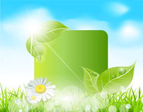 Vector spring banner with  leaves Royalty Free Stock Images