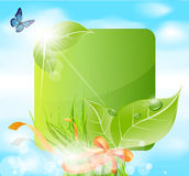 Vector spring banner with leaves, grass Stock Image