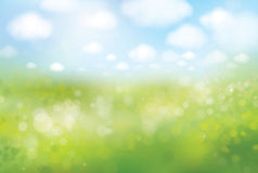 Vector spring  bokeh background, green field and blue sky. Stock Images