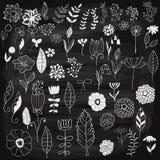 Vector Spring Floral Design Elements Stock Photos