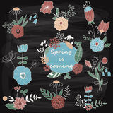 Vector Spring Floral Design Elements Stock Photo