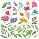 Vector Spring Flowers and Leaves Set Stock Photography