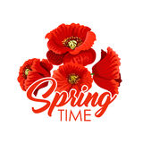 Vector spring flowers poppy bunch greeting poster Stock Photography