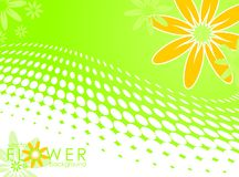 Vector spring illustration with flower Stock Photography